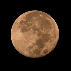 Hunters Moon (tommaync) Tags: moon nature oneaday nc nikon october harvest northcarolina full craters photoaday lunar celestial pictureaday 2014 chathamcounty d40 digitalcameraclub project365 project365280 project365100914