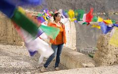 Fluttering prayer flags (Sribha Jain) Tags: india wind prayer flags tibet monastery slowshutter prayerflags leh jk ladakh fluttering flutter jammukashmir lamayuru