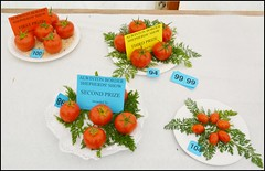 In the Produce Tent (Cul 9) Tags: