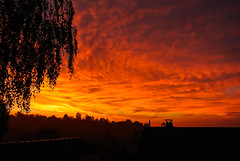 Burning morning sky ... (Kat-i) Tags: tree clouds sunrise wolken redsky kati sonnenaufgang baum morgenrot 2014 nikon1v1