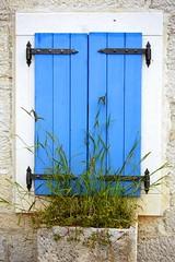 Shutters (radimersky) Tags: window wall lens lumix europa europe panasonic telephoto micro shutters shutter flowerpot gras mur 43 okno kroatien chorwacja vario trawa vodice chorvatsko donica okiennice ciana harvatska kamienny 45200mm dmcgf1 teleobiektyw