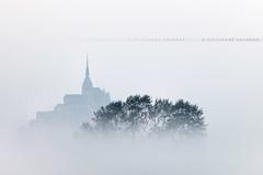 Brume sur le Mont (Guillaume Chanson) Tags: morning france tree fog canon ombre normandie arbre brouillard brume montsaintmichel matin lamanche canoneos5dmarkii