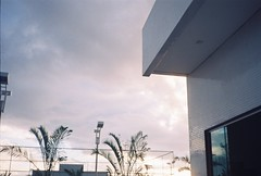 (hnnhcrvlh) Tags: brazil sky film window brasil 35mm cu janela filme prdio ceu paraiba predio vegetao paraba campinagrande yashicamf3