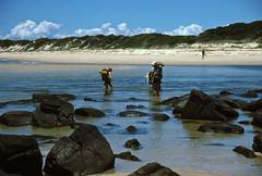 Crossing inlet at Nadgee Beach, 1985 (NettyA) Tags: summer film 35mm australia slide coastal bushwalking nsw scanned newsouthwales kodachrome 1986 1985 scannedslide bushwalkers farsouthcoast nadgee nadgeenaturereserve nadgeebeach