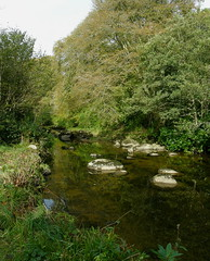 Stream boulders at the old campsite (billpolley) Tags: whitewaterriver codown mournepark