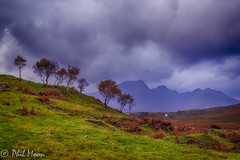 Bla Bheinn (Phil..........) Tags: trees mountains skye highlands birch blaven