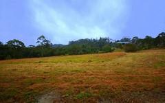 45 Baines, Mangrove Mountain NSW