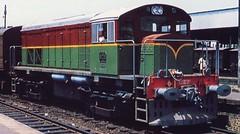 SLR Diesellocomotive N 909. (Franky De Witte - Ferroequinologist) Tags: de eisenbahn railway estrada chemin fer spoorwegen ferrocarril ferro ferrovia