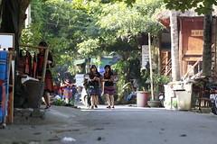 _MG_0584 (liem.ionetour) Tags: travel beautiful landscape nice asia tour du vietnam tay viet mai re gia dep sapa nam bac chau ione maichau dulich mocchau taybac hapdan ionetour