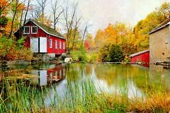 Morningstar  Mill in autumn (tonnycdl) Tags: autumn fall texture morningstarmill falllandscape tonnyc