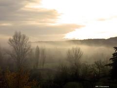 Nebbia sotto le colline n.1 (Paolo Bonassin) Tags: italy fog nebbia emiliaromagna zolapredosa