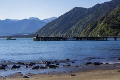 Jackson Bay (Koyuki91) Tags: newzealand island bay jackson southern kiwi nouvellezélande