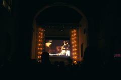 Hay Festival Cartagena 2014 - Who is Dayani Cristal ? (AmbulanteCol) Tags: gaelgarciabernal hayfestivalcartagena ambulantecolombia ambulantecol