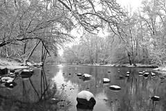 Snowy River (tim.perdue) Tags: park trees winter bw white snow black cold reflection ice nature water monochrome river season frozen rocks metro snowy olentangy highbanks monovember monovember2014