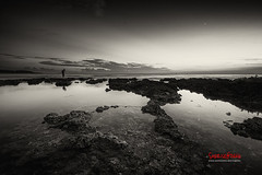 Autumn Wanlitong ( SUNRISE@DAWN photography) Tags: sunset blackandwhite bw coral twilight solitude sundown dusk taiwan  reef tidalpool pingtung