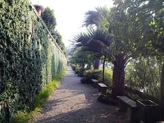 Viale d'ingresso al Giardino Botanico dell'Isola Madre