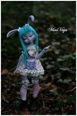 Brewster (MiniVega) Tags: loo dolls dreaming bjd lillycat loonette cerisedolls minivega