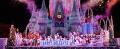 Magic Kingdom (wdwSteve) Tags: christmas nikon magic sigma kingdom disneyworld mvmcp 2013 1750mm d7000