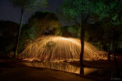 Entre pinos (molina09) Tags: nikon nocturna pinar molina d800 sanisidro largaexposicin lanadeacero