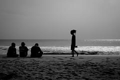 silhouette (paul.wienerroither) Tags: ocean travel light sea blackandwhite beach silhouette canon photography lights blackwhite srilanka arugambay