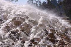 Mammoth Hot Springs, Wyoming (bbosica20) Tags: yellowstonenationalpark yellowstone wyoming hotsprings mammothhotsprings yellowstonenp northentrance