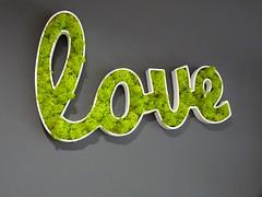 Love - Dites-le avec des fleurs ! (johnslides//199) Tags: flowers art love fleurs word moments poem heart emotion couleurs arts coeur vert amour imagination herz dcoration poeme sentiment feelings farben mot magie fleuriste herzlich kreation