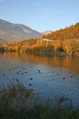 vagues de couleurs (luka116) Tags: automne schweiz switzerland suisse swiss lac svizzera paysage wallis octobre valais sierre 2011