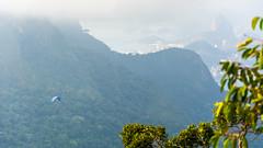 DSC_4085 (sergeysemendyaev) Tags: 2016 rio riodejaneiro brazil    pedradagavea mountain hiking trilha carrasqueira       paragliding