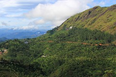 Munnar 061215 (2) (Richard Collier - Wildlife and Travel Photography) Tags: india kerala munnar landscape