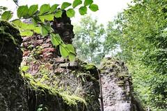 Castle Ruin (benjaminfuchs) Tags: king 18250 sigma wall 650d eos canon ruin castle