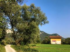 (Paolo Cozzarizza) Tags: italia lombardia lecco airuno sentiero prato graffito muro panorama bicicletta alberi