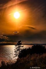 Ce n'est qu'au prix d'une ardente patience que nous pourrons conqurir la cit splendide qui donnera la lumire, la justice et la dignit  tous les hommes. Ainsi la posie n'aura pas chant en vain. (MichelGurin) Tags: 2016 august clouds exterior lightroomcc nature nikon nikon2470mm nuages parcforillon paysage qc soleil sun trees arbres ca aot canada t extrieur lactedegasp lumire michelgurin qubec