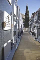 Regreso a Nada. (elojeador) Tags: calle ciprs cemento nicho columnario flor ramo florero mrmol cruz cristo cementerio cementeriodemacael oaparteninguna elojeador