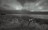 Beratan Lake (Arushad) Tags: arushad bali clouds indonesia travel arushadahmed beratan bw canoe dash8x grass hills lake