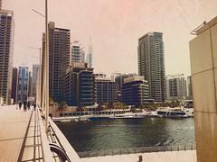 Move to Dubai, September 2016 (Bryn Pinzgauer) Tags: festivalcity dubai marina relocation