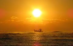 IMG_0069k (gzammarchi) Tags: italia paesaggio natura mare ravenna lidodidante alba sole nuvola barca riflesso monocrome