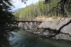 IMG_9432 (ctmarie3) Tags: banffnationalpark lakeminnewanka stewartcanyon trail