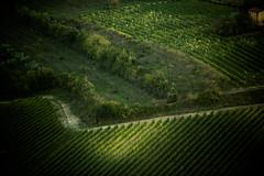TuscanyUmbria-1060