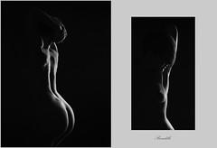 diptyque (Peccadille31) Tags: noiretblanc blackandwhite nu nude femme frenchphotographer frenchmodel chiaroscuro clairobscur canon elinchrom portrait autoportrait woman