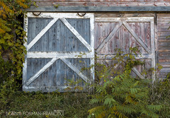 20161007-BFF_9801-2 (Bonnie Forman-Franco) Tags: abandonedhouse berkshires colors doors fallfoliage mountains abandonedbarns flowers abandoned house hdr