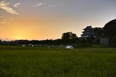 Sunset ,Owari Asahi ,Japan (marcelo.nakazaki) Tags: tree rvore rice arrozal plantaodearroz tambo car carro sky cu city cidade castle castilho castelo pordosol crepsculo sunset arquitetura aoarlivre aichiken sia japon japan japo