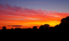 Fire in the sky. (pstone646) Tags: sunset clouds sky colour nature kent ashford orange blue silhouette