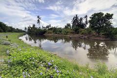 Sungai Udang reflection. (<Pirate>) Tags: sungai udang nibong tebal fishing point fish traders fresh october 23rd 1018 is stm ray masters gnd 9soft penang malaysia