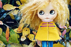 October in Stockholm (mademoiselleblythe) Tags: blythe custom zaloa mformonkey stellinna squeakymonkey stockholm fall october