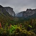 A Valley of Trees with Mountain Peaks All Around (Yosemite National Park)