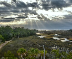 71A_2821_2_3_Localtone (Capt A.J.) Tags: withlacoochee gulf preserve wgp yankeetown observation tower