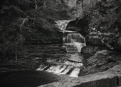 Falls by The Old Mill, Fish Kill (LJS74) Tags: nature monochrome bw blackandwhite waterfalls fingerlakes newyorkstateparks treman fishkill fallsbytheoldmill