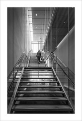 Chica en l'escala II /Girl in the stairs II (ximo rosell) Tags: ximorosell bn blackandwhite blancoynegro bw nikon d750 stairs museu artinstituteofchicago arquitectura architecture chicago illinois llum luz light people