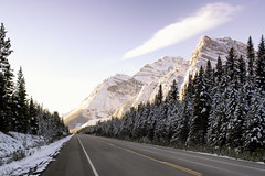 Drive To See The Giants (gwendolyn.allsop) Tags: mountains canada icefield parkway road drive view alberta d5200 snow