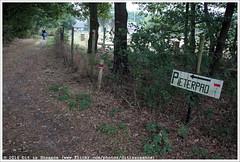 <------- Pieterpad (Dit is Suzanne) Tags: img4727 17092016 nederland netherlands нидерланды limburg лимбург ©ditissuzanne canoneos40d sigma18250mm13563hsm wandeling walk прогулка langeafstandswandeling longdistancewalk pieterpad питерпад law9 nazomer indiansummer бабьелето путешествуяпонидерландам ontheroadinthenetherlands onderweginnederland etappe8 geysterenhouthuizen гейстеренхаутхёйзен сволгенхаутхёйзен swolgenhouthuisen geotagbijbenadering approximategeotag m м views50